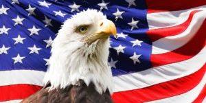 eagle-219679_1280-300x200