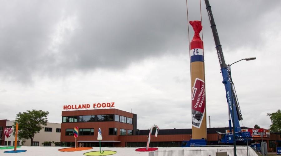 Reuzenkaneelstok in Oosterhout