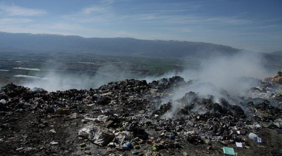 Laurel Brunner: Waste And Guilt