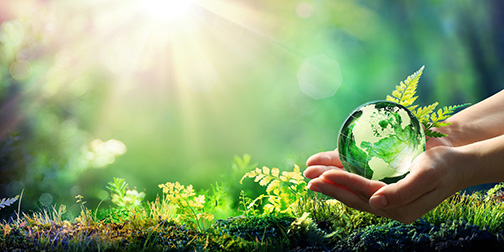 Hands Holding Globe Glass In Green Forest Environment Concept Element Of Image Furnished By Nasa
